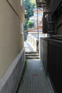 IMG_2911
