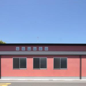 陽の当たり方によってピンク色の見え方が変わります。ⓒ佐藤二郎